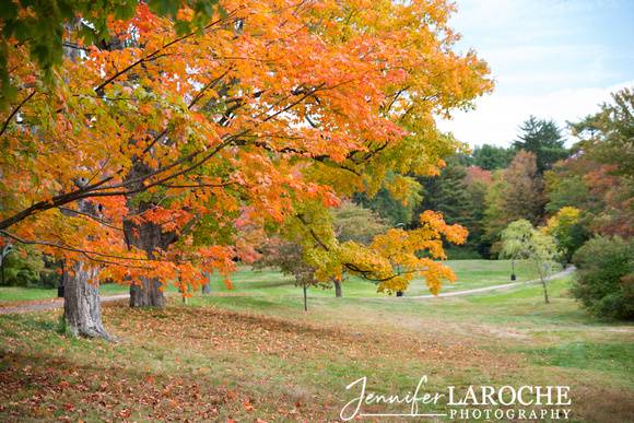 Fall-Foliage-at-Wellesley-College