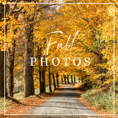 Fall-Photography-Photo-prints