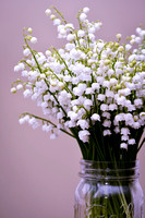 bunch of lily of the valley in a mason jar
