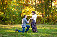 Fall Surprise Proposal