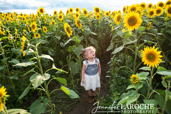 Colby-Farm-Sunflower-Portraits-Kids-and-Families
